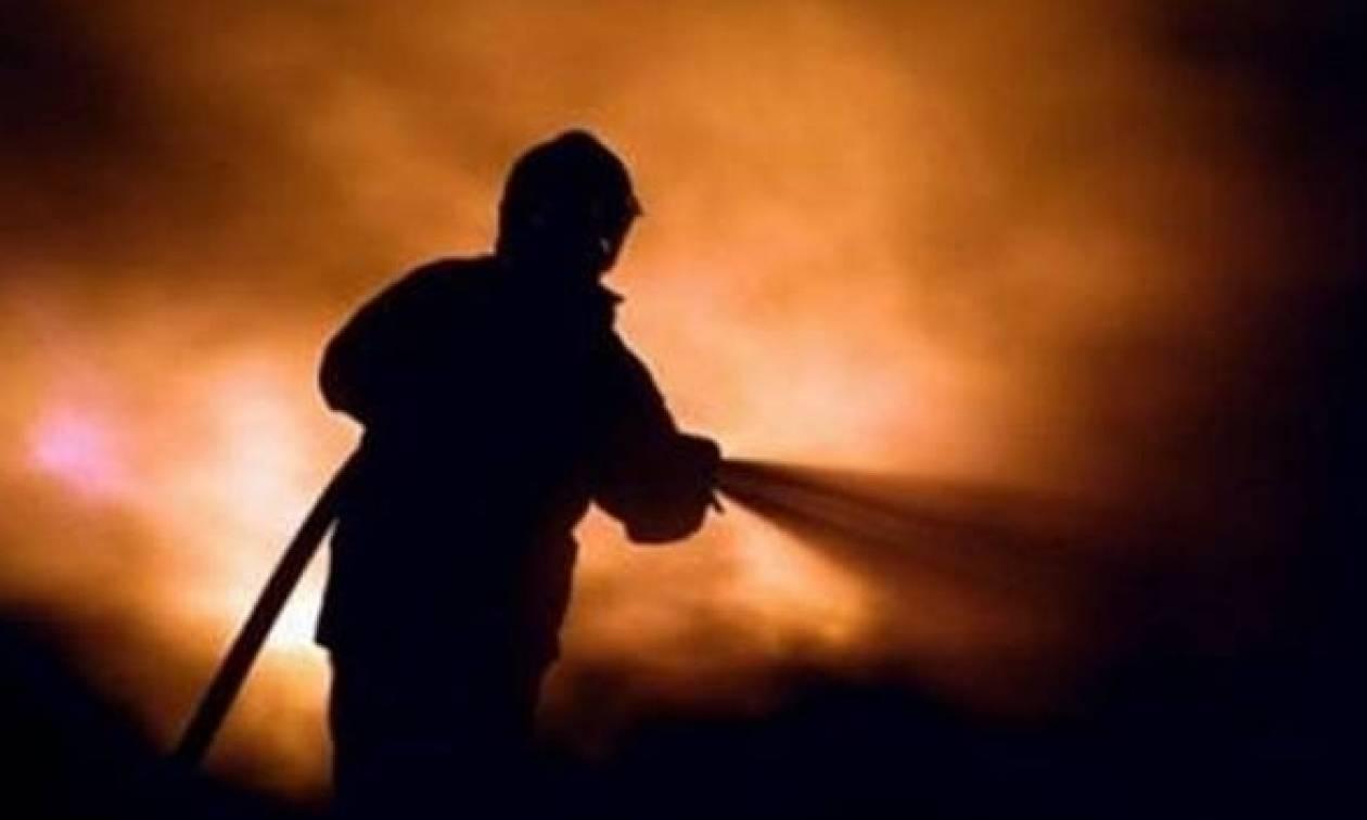 Φωτιά: Σε εξέλιξη η πυρκαγιά στα Φάρσαλα