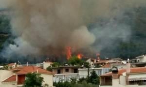 Αχαΐα: Μεγάλη φωτιά στον Ομπλό απείλησε σπίτια (vid)