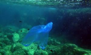 Περιβαλλοντικό «χαράτσι» στις πλαστικές σακούλες – Πόσο θα πληρώνουμε από το 2018