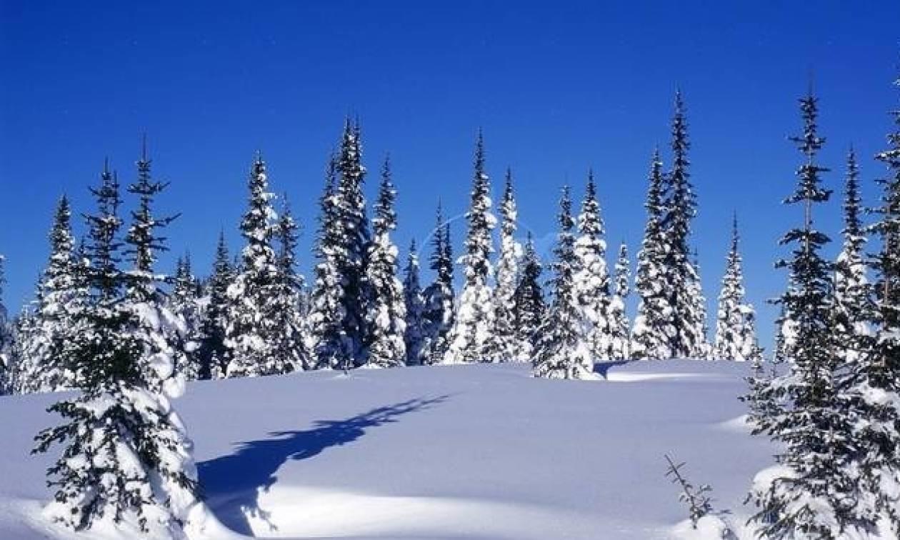 Καιρός για χιόνια: Απίστευτο! Δείτε σε ποια περιοχής της Ελλάδας το «έστρωσε» (pics)