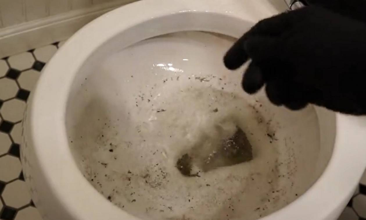 Θέλετε να έχετε το μπάνιο σας πάντα καθαρό; Δείτε αυτά τα απίθανα κόλπα... (video)