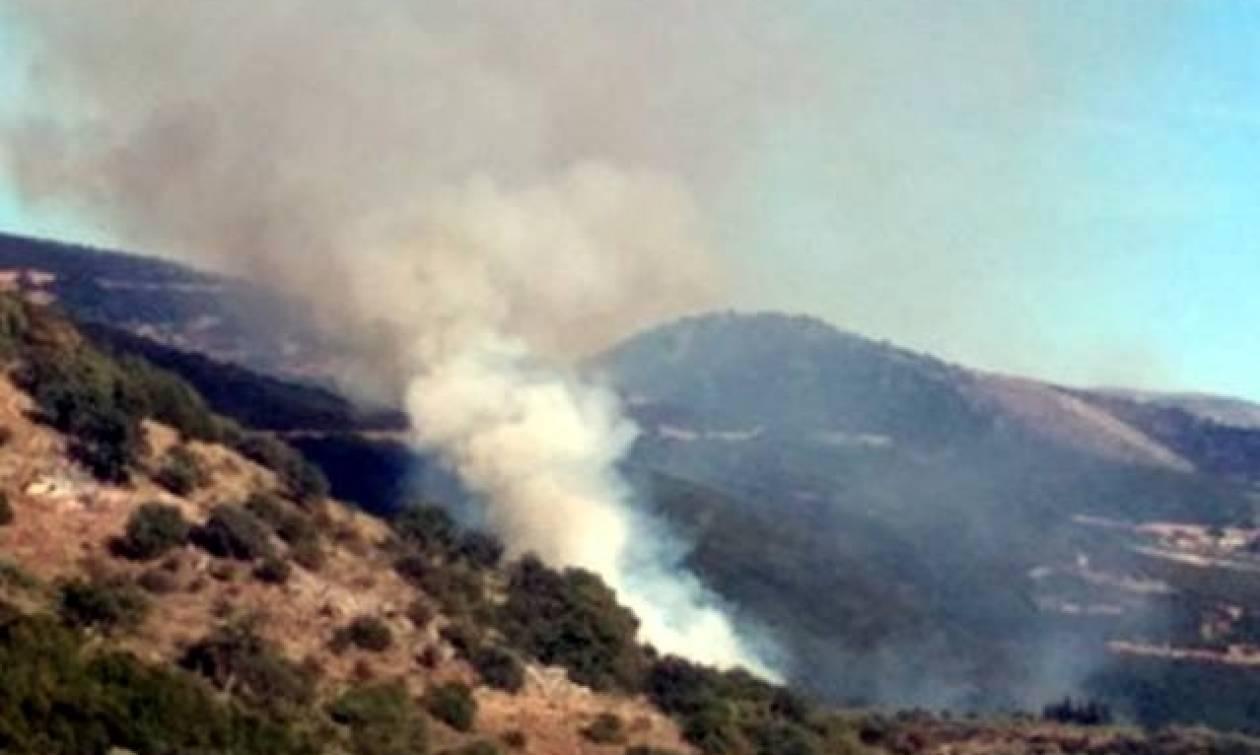 Φωτιά ΤΩΡΑ: Πύρινος εφιάλτης στην Παλαιοκαρυά