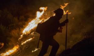 Τρία πύρινα μέτωπα στην Καλιφόρνια - Εκκενώνονται σπίτια (pics)