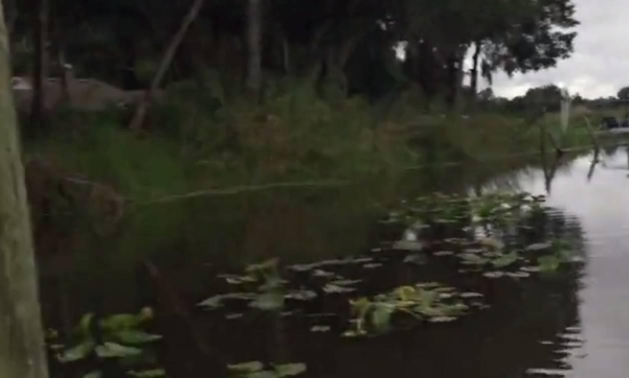 Το ποτάμι του τρόμου! Δείτε γιατί κανένας δεν πρέπει ποτέ να βουτήξει σε αυτά τα νερά (video)