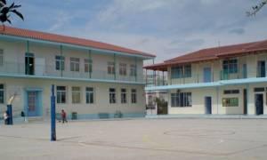 Θρίλερ στα σχολεία: Άγνωστοι πετούν ναφθαλίνη στα προαύλια