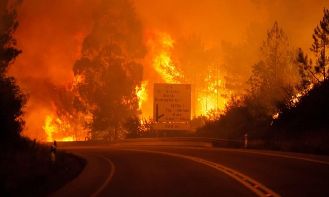 Χάος και ιστορικό ρεκόρ στην Πορτογαλία - Τουλάχιστον 440 πυρκαγιές σημειώθηκαν την Κυριακή!