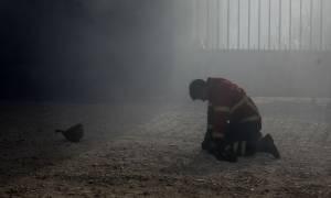 Νέα πύρινη κόλαση στην Πορτογαλία: Τουλάχιστον 27 νεκροί (pics+vid)