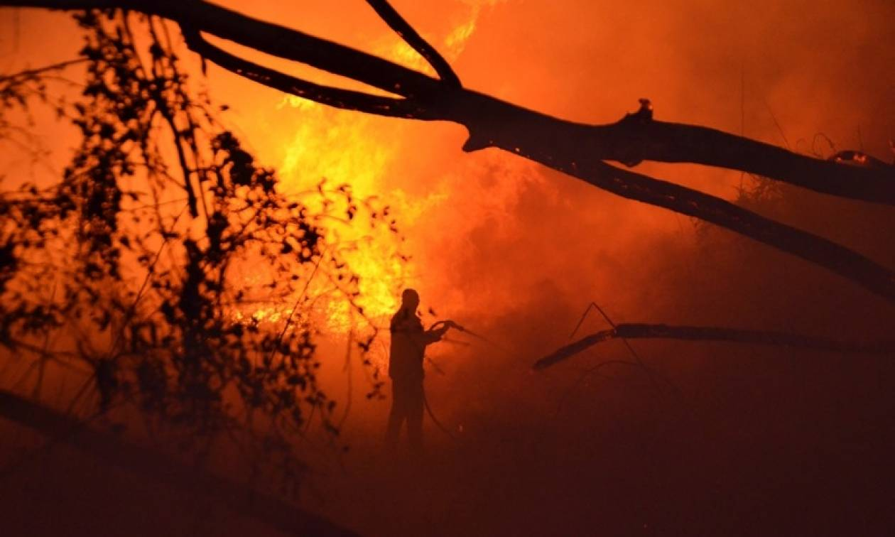 Φωτιά ΤΩΡΑ στην Αχαΐα - Καίγεται η Καλόγρια