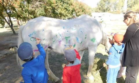 Σάλος με παιδικό σταθμό στη Θεσσαλονίκη: Έβαλαν παιδιά να ζωγραφίσουν πάνω σε άλογα! (pics)