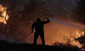 Μαίνεται η φωτιά στη Νεμούτα Ηλείας: Πύρινη κόλαση με έναν τραυματία