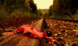 Καιρός: Ανησυχία για την παρατεταμένη ανομβρία – Πότε θα βρέξει ξανά