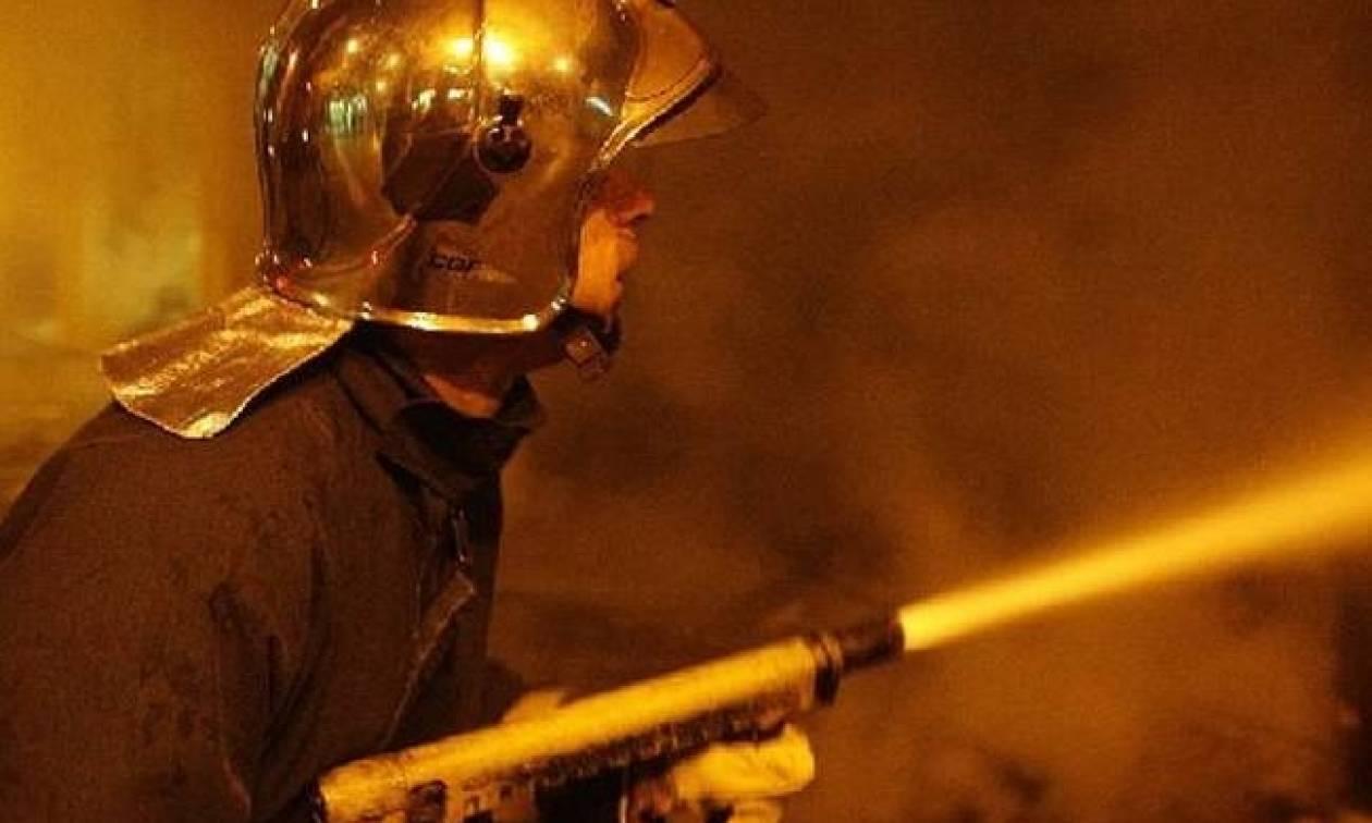 Σε εξέλιξη βρίσκεται φωτιά σε ποιμνιοστάσιο στο Αργυροπούλι Λάρισας - Έχουν καεί ζώα