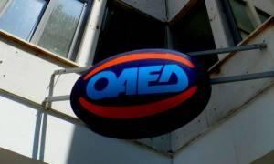 ΟΑΕΔ: Αναρτήθηκαν οι πίνακες για 1.135 θέσεις εργασίας