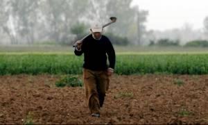 Αγρότες: Ξεκινούν οι πληρωμές - Δείτε ποιοι θα πάρουν χρήματα και πότε