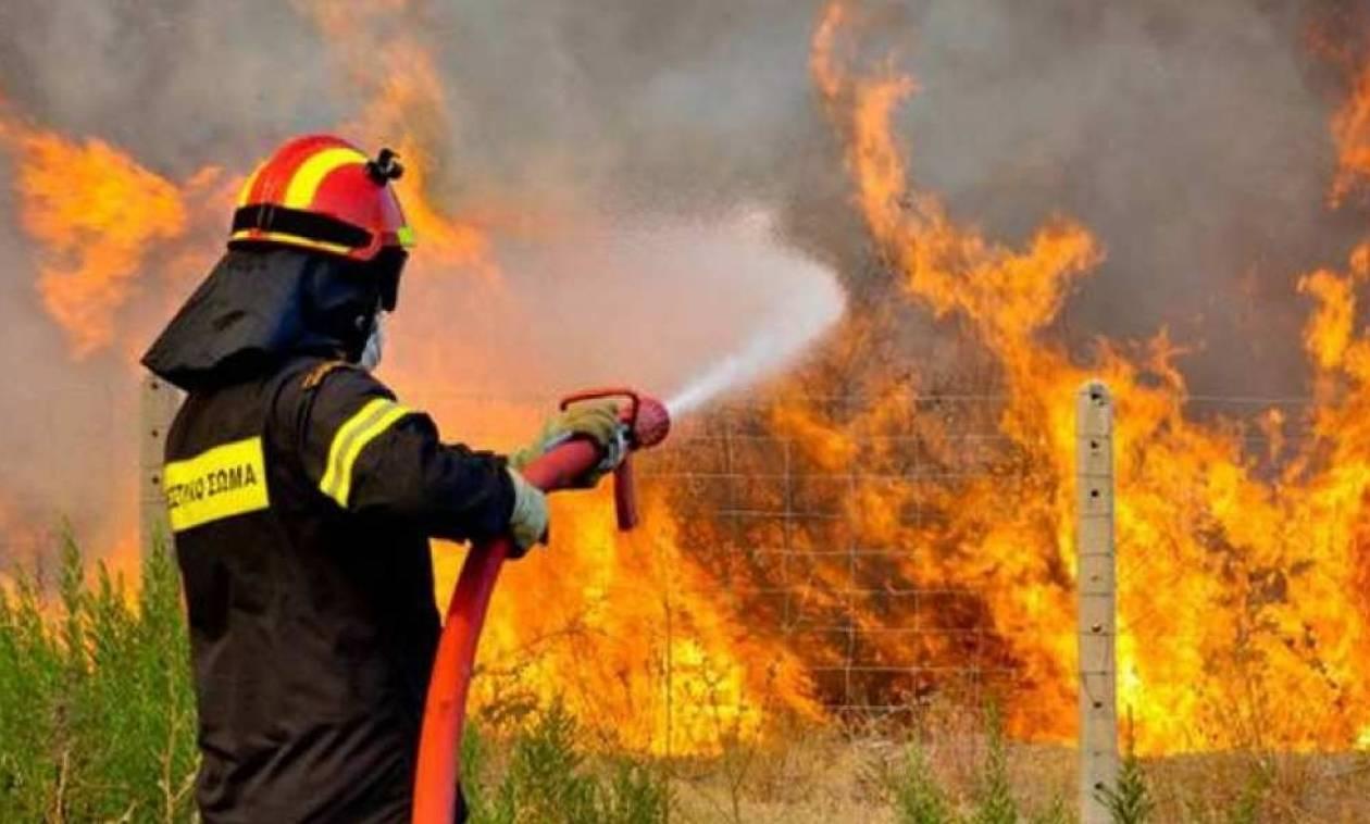 Συναγερμός για φωτιά στην Κρήτη