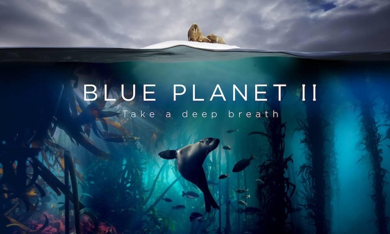 BluePlanet II: Tο πολυαναμενόμενο ντοκιμαντέρ του BBC Earth κάνει πρεμιέρα αποκλειστικά στην COSMOTE