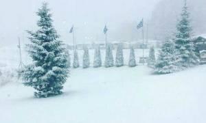 Καιρός LIVE: Το «έστρωσε» σε αρκετές περιοχές – Δείτε πού χιονίζει ΤΩΡΑ
