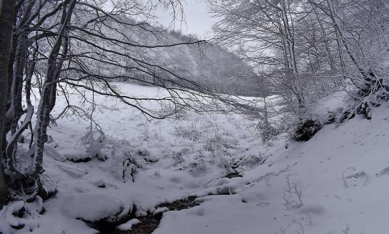 Καιρός – ΕΚΤΑΚΤΟ ΕΜΥ: Έρχεται μεγάλη κακοκαιρία - Πού το «έστρωσε» – Πού θα χιονίσει σε λίγες ώρες