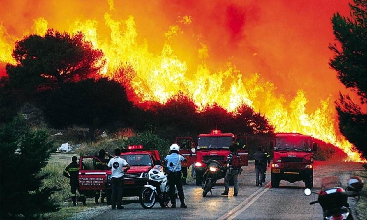Ασύλληπτη καταστροφή: Μόνο φέτος κάηκαν 234.000 στρέμματα γης στη χώρα μας!