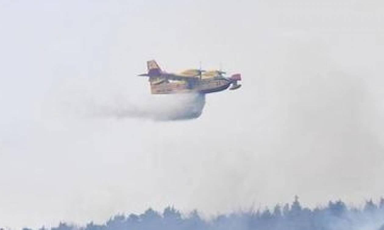 Σε κατάσταση έκτακτης ανάγκης από τις φωτιές η βόρεια Ιταλία