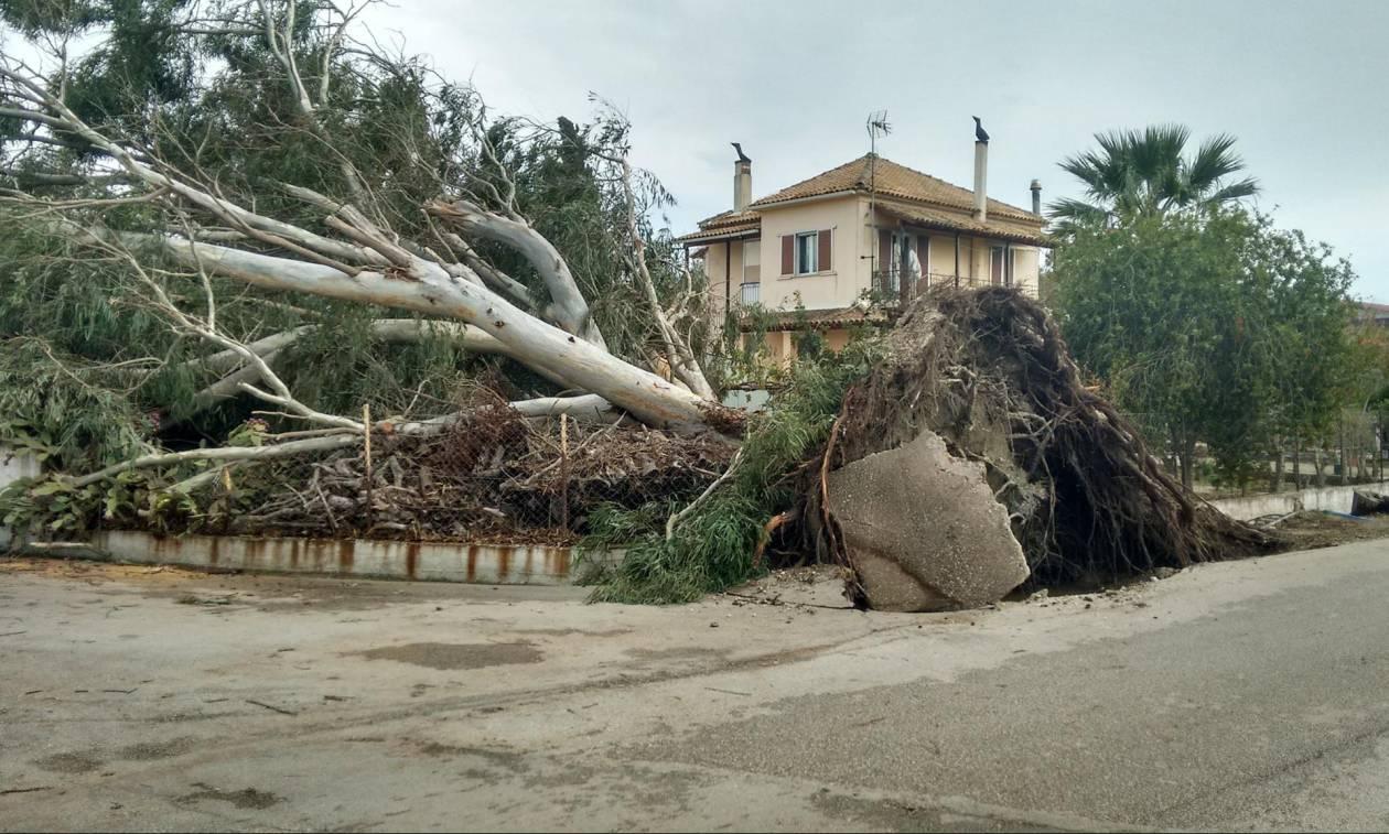 Κακοκαιρία: Με βομβαρδισμένο τοπίο μοιάζει η Κέρκυρα - Αρχίζει η καταγραφή των καταστροφών