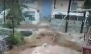 Κακοκαιρία Σύμη: Καταστροφικό το πέρασμα της «Ευρυδίκης» - Αυτοκίνητα έπεσαν στο λιμάνι (vid)