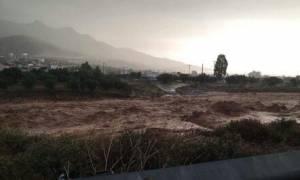 Πλημμύρες ΤΩΡΑ: Τραγωδία με 2 νεκρούς- Κατάσταση έκτακτης ανάγκης σε Μάνδρα, Μέγαρα, Νέα Πέραμο