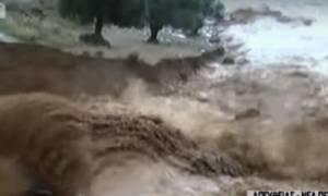 Συγκλονίζουν οι κάτοικοι στη Νέα Πέραμο: «Βοηθήστε μας, θα πνιγούμε» (vid)