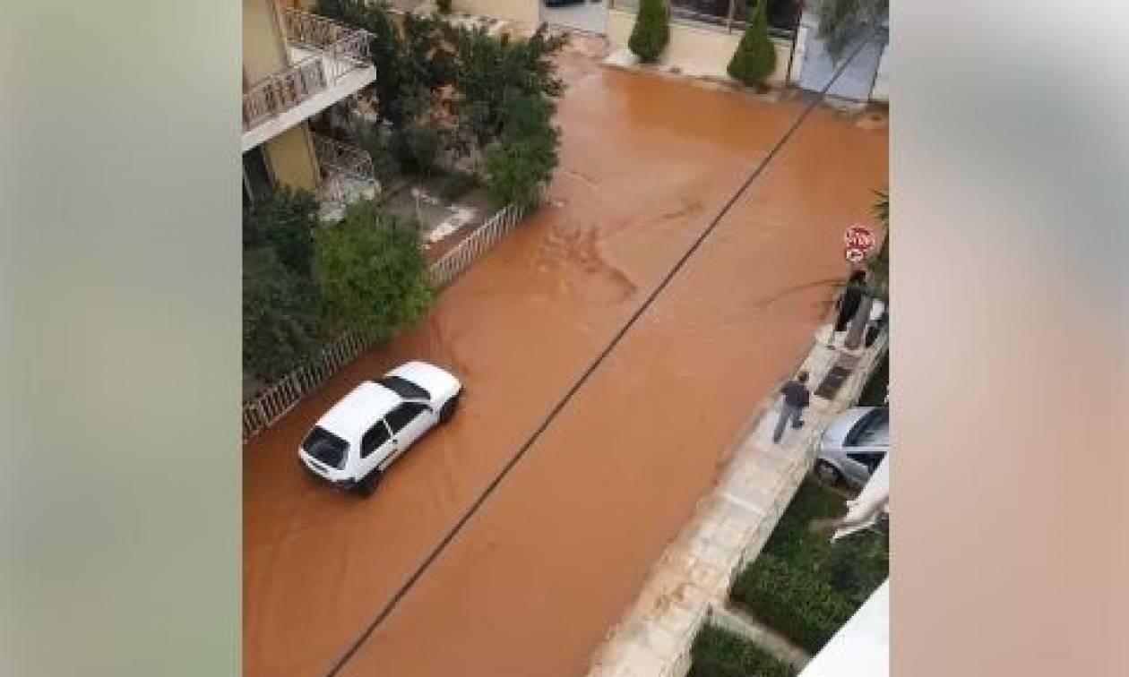 Πλημμύρες Μάνδρα: Μια νεκρή από τη φονική κακοκαιρία σε Νέα Πέραμο, Μάνδρα και Δυτική Αττική