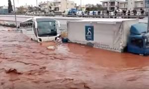Πλημμύρες - Βίντεο ντοκουμέντο: Η στιγμή που ορμητικά νερά πνίγουν οχήματα