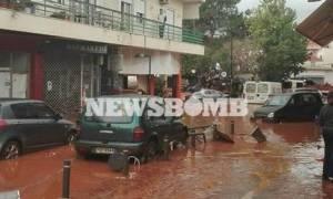 Πλημμύρες Μάνδρα - Νέα Πέραμος: Αυτοί είναι οι νεκροί της φονικής κακοκαιρίας