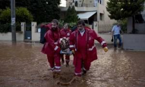 Κακοκαιρία: Στο πλευρό των πληγέντων ο Ελληνικός Ερυθρός Σταυρός (pics & vid)