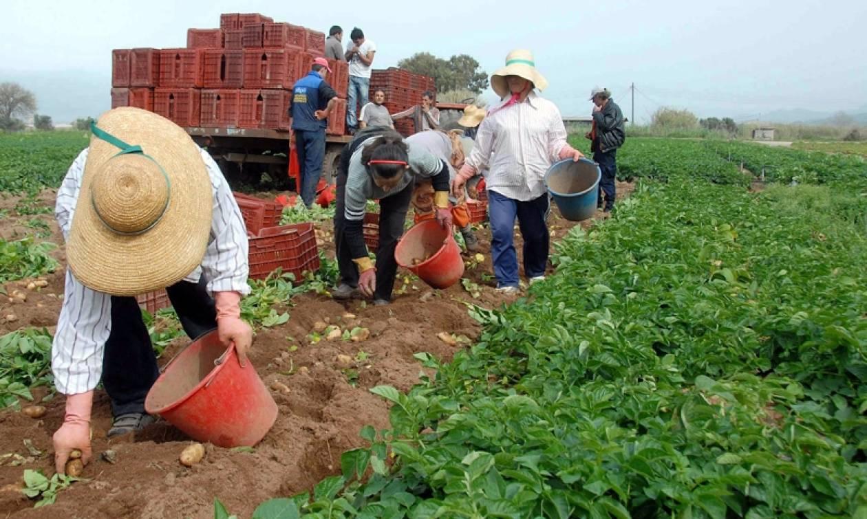 Αποτέλεσμα εικόνας για Αγρότες
