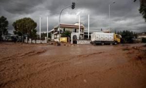 Λάσπη, απόγνωση και καταστροφές στη Δυτική Αττική - Κορυφώνεται η αγωνία για τους αγνοούμενους