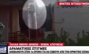 Βίντεο-ντοκουμέντο από τη Μάνδρα: Καρέ-καρέ η προσπάθεια δυο ηλικιωμένων να σωθούν από τον χείμαρρο