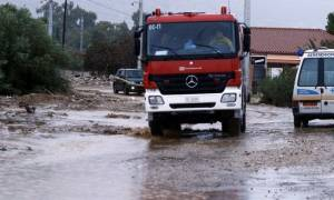 Καιρός: Ο «Ζήνων» σάρωσε τη χώρα - Ξεριζώθηκαν δέντρα, κατολισθήσεις και απεγκλωβισμοί