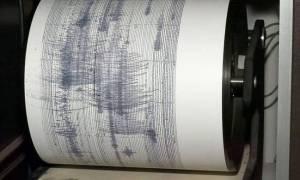Σεισμός 7 Ρίχτερ στη Νέα Καληδονία: Κύματα τσουνάμι χτύπησαν διάφορες περιοχές