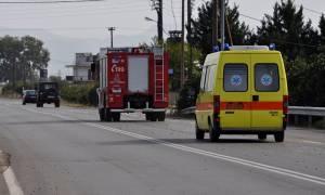 Νέα Λαμίας: Σοβαρό τροχαίο – Σύγκρουση αυτοκινήτου με αγριογούρουνα