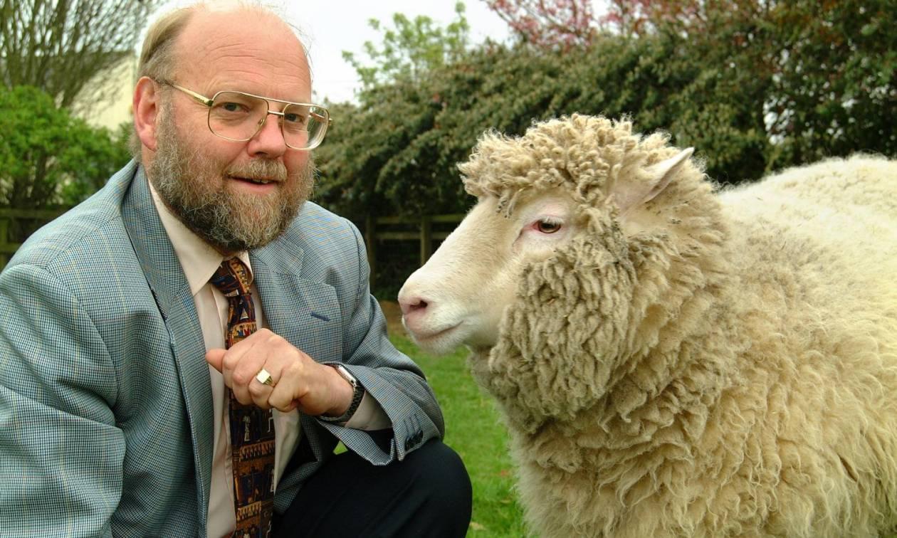 Νέα έρευνα ανατρέπει όσα γνωρίζαμε για τη Ντόλι το πρώτο κλωνοποιημένο πρόβατο