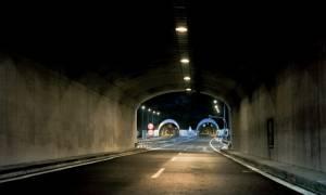 Αναστάτωση στην Εγνατία Οδό: Έκλεισε για μισή ώρα εξ αιτίας … μουλαριού!