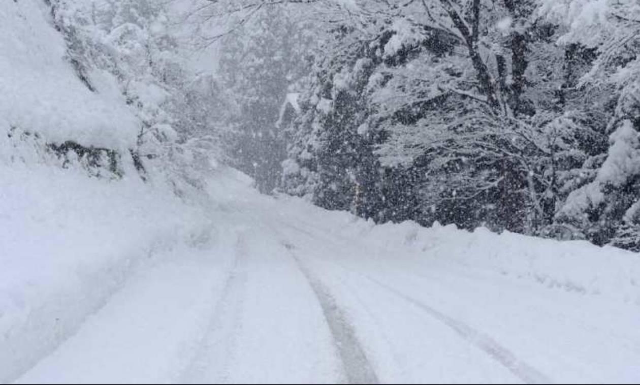 Νέα - Φλώρινα: Φανταστικές εικόνες από τα πρώτα χιόνια (photos)