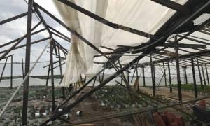 Κακοκαιρία - Εικόνες ΣΟΚ: Ανεμοστρόβιλος σάρωσε θερμοκήπια στην Κέρκυρα (pics)
