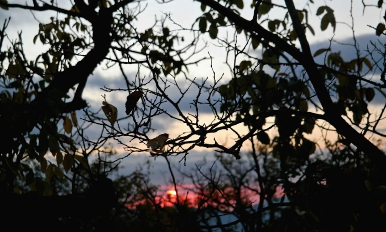 Ο καιρός σήμερα (3/12) - Αναλυτική πρόγνωση