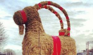 Viral: Θα γλιτώσει φέτος τις φλόγες η χριστουγεννιάτικη «κατσίκα» στο Γκέβλε; (Vid)