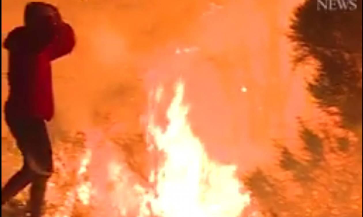Ο ήρωας της Καλιφόρνιας: Σώζει με αυτοθυσία κουνέλι από την καταστροφική πυρκαγιά (vid)