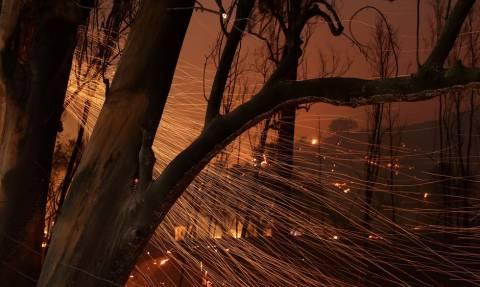 Μαίνονται οι πυρκαγιές στην Καλιφόρνια - Απειλούνται χιλιάδες σπίτια (vids)