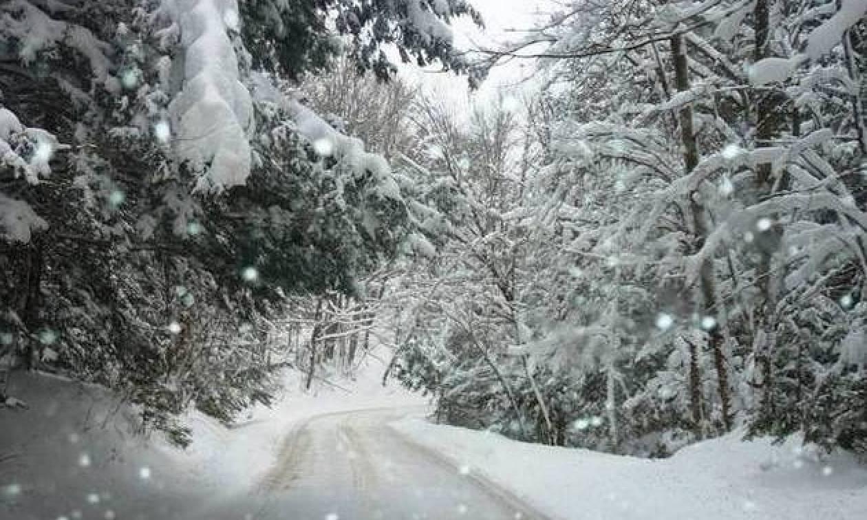 Πάμε για Χριστούγεννα με κρύο και χιόνια; Τι λέει ο Σάκης Αρναούτογλου; (video)