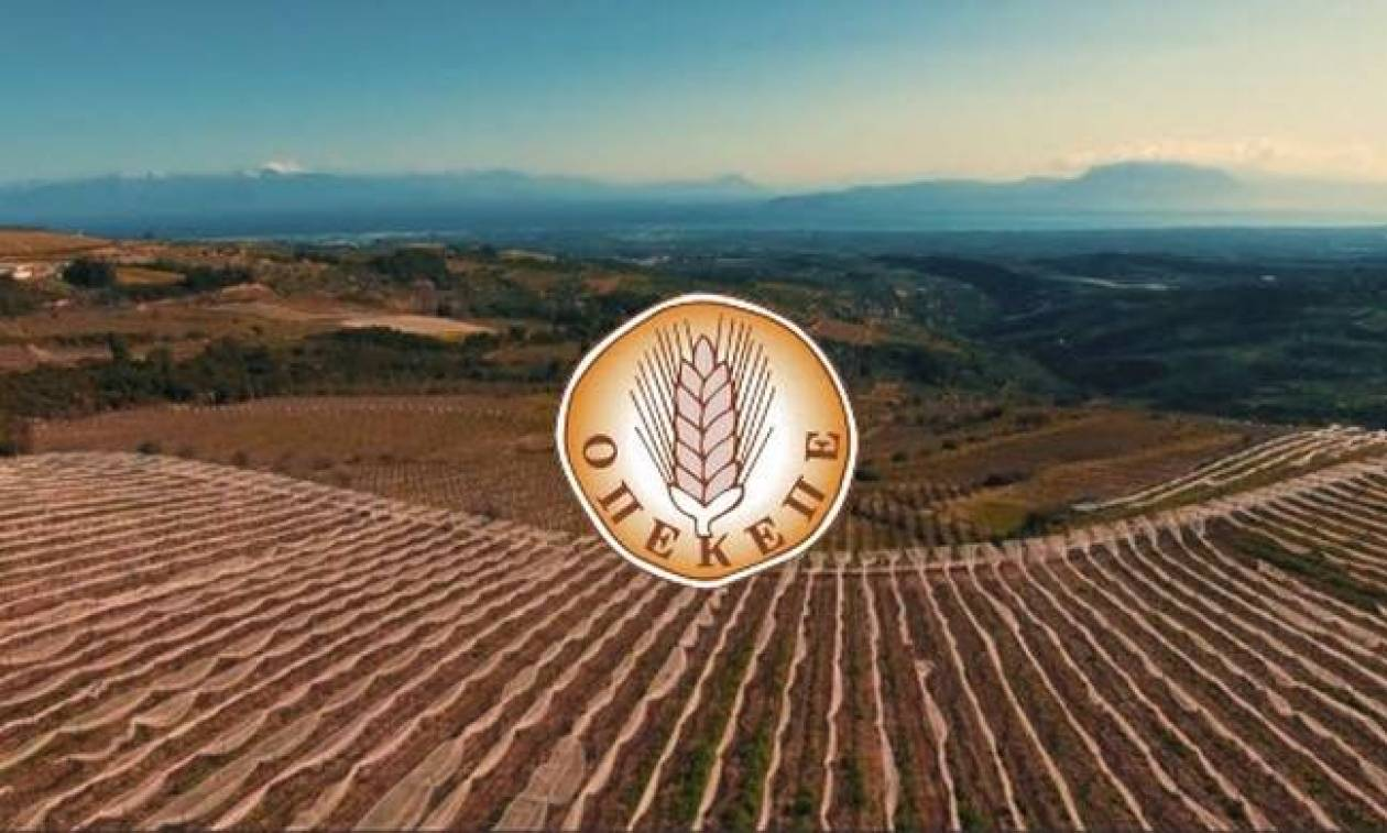 ΟΠΕΚΕΠΕ: Πληρωμή 4,5 εκατ. ευρώ σε 484 δικαιούχους αγρότες