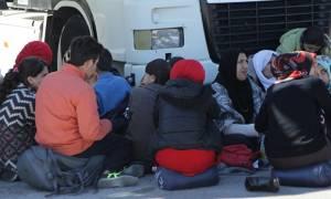 Στο λιμάνι του Πειραιά 183 πρόσφυγες από Χίο και Μυτιλήνη