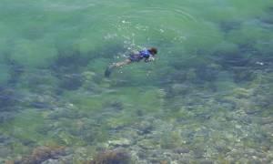 Κρήτη: Συναγερμός στο λιμενικό για ψαροντουφεκά που κινδύνευσε ανοιχτά του Κούλε